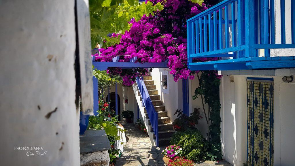 Curte grecească, Old Town, Insula Alonissos