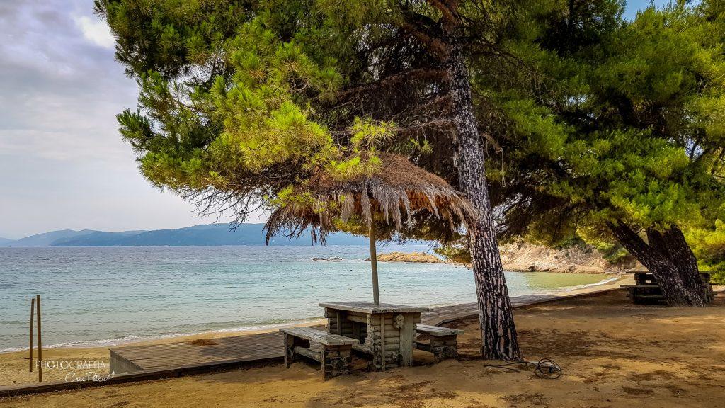 Banana Beach, Skiathos, Grecia